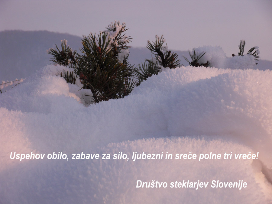 DSTS_Srecno_2013